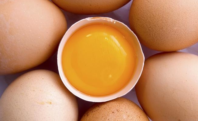 Яйцо - источник белка