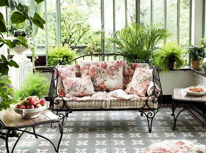 комнатные растения 3