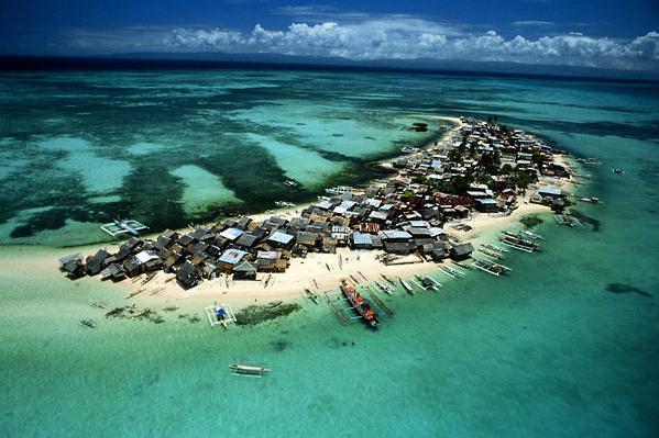 Голубой коралловый риф
